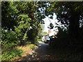 TM2584 : Hallwong Lane, Redenhall by Geographer