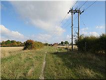 TL3142 : Power lines along Ashwell Street by Hugh Venables