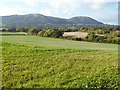 SO8044 : Malvern Hills viewed from Ox Hill by Philip Halling
