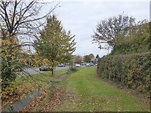 SX9289 : The grass verge and drain of Bad Homburg Way by David Smith