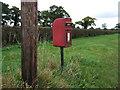 SJ7572 : Elizabeth II postbox on London Road (A50) by JThomas