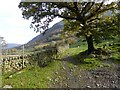NY2312 : Path heading down dale at Seathwaite by Oliver Dixon