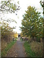 NZ3456 : Shared cycle and pedestrian path near South Hylton by Malc McDonald