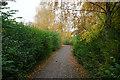 SJ6692 : Footpath in Gorse Covert by Bill Boaden
