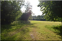 TQ3328 : High Weald Landscape Trail by N Chadwick