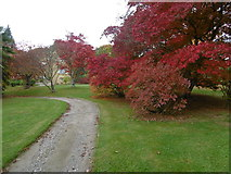 TQ5237 : Autumn in the grounds of Burrswood Hospital by Marathon