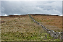 NY6511 : Wall heading up Linglow Hill by Nigel Brown