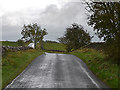 NY7011 : The Whygill Head road by Nigel Brown
