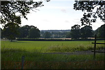 TQ3227 : Sussex farmland by N Chadwick