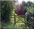 SK6613 : Bridleway to Gaddesby by Andrew Tatlow