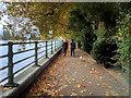 TQ2376 : River Thames Path, Fulham by David Dixon