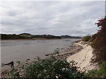 NX8354 : Cockle Shell Beach and Rough Firth by Les Hull
