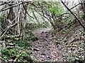 SK2656 : Hollowchurch Way by Ian Calderwood