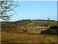 NU2212 : Virgin train on Alnmouth Viaduct by pam fray