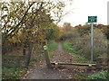 NZ3354 : Bridleway on former railway at Cox Green, near Washington by Malc McDonald