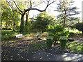 SJ8846 : Hanley Park: wildlife garden by Jonathan Hutchins