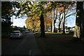 NS5474 : Craigton Gardens, Milngavie by Richard Sutcliffe