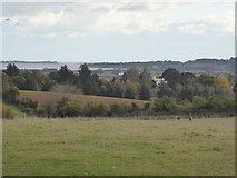SX9588 : View to the Exe estuary from Pynes Hill, Exeter by David Smith