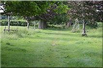TQ5344 : Footpath, Penshurst Estate by N Chadwick