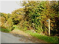 SX2678 : Public bridleway leading to Lemalla by Rod Allday