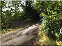 TL1614 : Leasey Bridge on Cherry Tree Lane over River Lea by Geographer