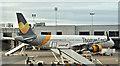 J1580 : G-TCDL, Aldergrove (November 2016) by Albert Bridge