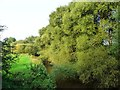 SJ6967 : The River Dane from Croxton Aqueduct by Christine Johnstone