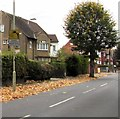 SO8317 : Camera Controlled Speed Zone sign, King Edward's Avenue, Gloucester by Jaggery
