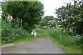 TL4663 : Roman Road by N Chadwick