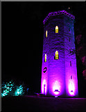 NJ0459 : Nelson Tower in Magenta by Anne Burgess