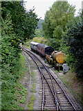 SJ1143 : The Llangollen Railway near Carrog in Denbighshire by Roger  Kidd