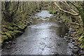 SO1602 : River Sirhowy, below Hollybush by M J Roscoe