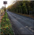 ST5196 : Speed camera sign at the southern edge of St Arvans by Jaggery