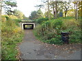 NZ3055 : Pedestrian path and underpass, Washington by Malc McDonald