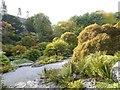 SD4987 : A sunken garden at Sizergh Castle by David Smith