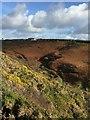 SM7624 : Gorse, Bracken and Sky by Alan Hughes