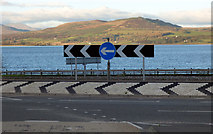 NS3174 : Roundabout by the Clyde by Thomas Nugent
