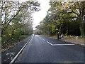 TQ4470 : A very quiet Bromley Road by Marathon