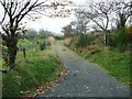 SN1633 : Lane leading to the 'Golden Road' bridleway and Foeldrygarn by Humphrey Bolton