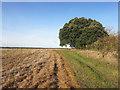 SU7993 : Footpath near Huckenden Farm by Des Blenkinsopp