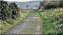 J3878 : Coastal path, Belfast harbour (November 2016) by Albert Bridge