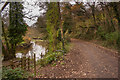 SX0169 : River Camel and Camel Trail by Guy Wareham