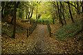 TL2213 : Ayot Greenway, Sherrardspark Wood by Stephen McKay