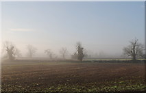 ST8180 : Winter Countryside, Acton Turville, Gloucestershire 2014 by Ray Bird