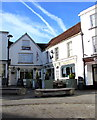 ST5393 : White Lion, Chepstow by Jaggery