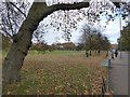 TQ2874 : The southern edge of Clapham Common by David Smith