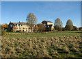 TL3170 : St Ives: Wilhorn Meadow in November by John Sutton