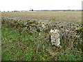 SO8907 : Milestone beside a stone wall by Philip Halling