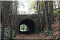 ST7661 : Long Arch Bridge, Midford by John Winder