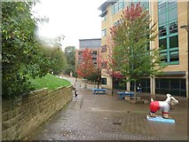 NZ2564 : Broad Chare, Newcastle upon Tyne by Graham Robson